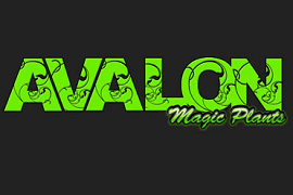 Avalon Magic Plants Coupon
