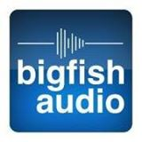 Big Fish Audio Coupon