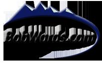BobWards Promo Codes