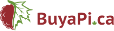 Buyapi.ca Coupon