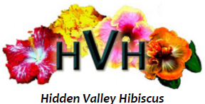 Hidden Valley Hibiscus Promo Codes
