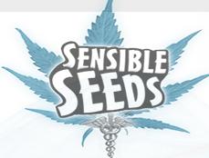Sensible seeds Promo Codes