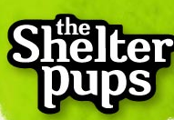 Shelter Pups Coupon
