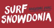 Surf Snowdonia Promo Codes