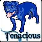 tenacioustoys.com Promo Codes
